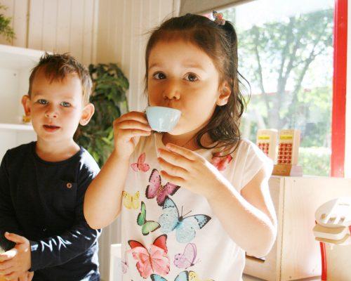 Montessori dagpvang